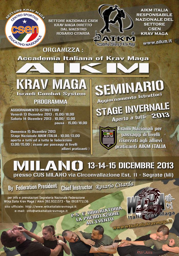 Stage e Seminario Invernale Nazionale 2013 – Milano