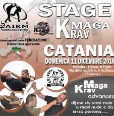 stage-kravmaga-catania-450