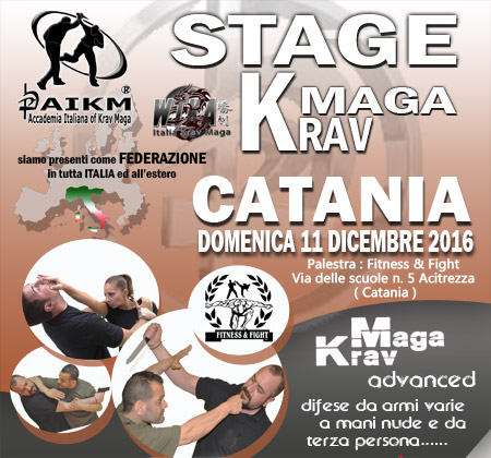 Stage Krav Maga Aikm – Csen – Wtka KM – Catania